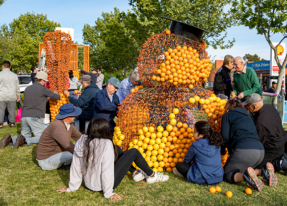 Construct a Citrus Sculpture
