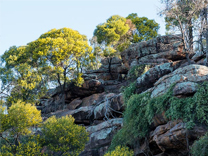 Cocoparra National Park